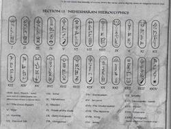 Warhammer Tomb Kings Language