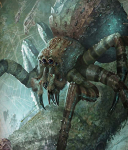 Warhammer Giant Spiders