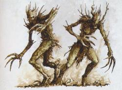 Sisters of the Eternal Grove