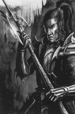 Warhammer Kouran Darkhand