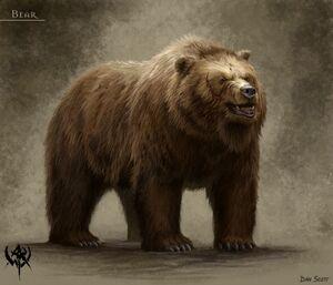 Warhammer Bear