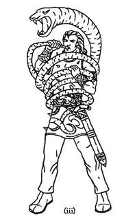 Warhammer Cherusen Hornblower