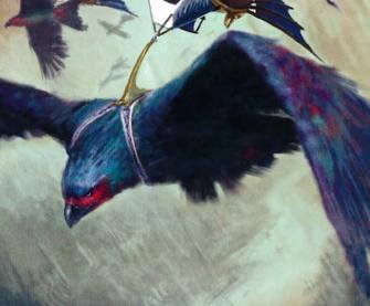 Swiftfeather Roc