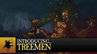 Total War WARHAMMER - Introducing... Treemen