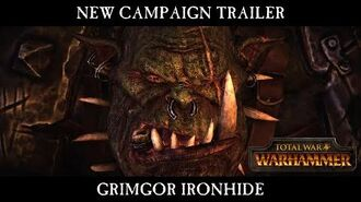 Total War WARHAMMER - Grimgor Ironhide Campaign Trailer - In-Engine Cinematic ESRB