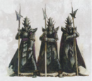 Eternity Guard