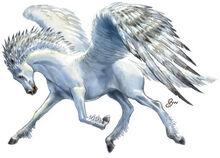 Creature Pegasus