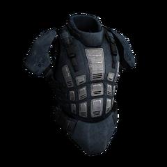 Adaptive Camouflage Armor