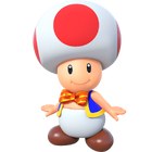 Toad(SMP)0
