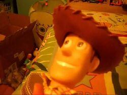 Woody'sClone 002 0001