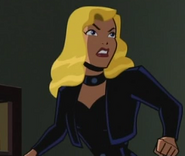 Black Canary the brave and the bold