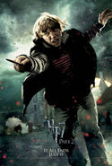 Harry-potter-deathly-hallows2-ron-weasley-poster2