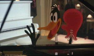 File:Daffy-duck wfrr.jpg