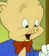 Porky-pig-tiny-toon-adventures-5.82