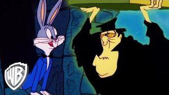 Looney Tunes Hocus Pocus Hare
