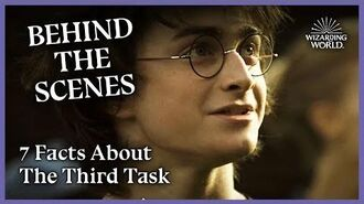 7 Behind-the-Scenes Facts About The Third Task Wizarding World