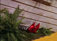 Wizardofoz-movie-screencaps com-2428