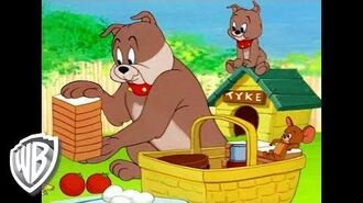 Tom & Jerry Have a Picnic Classic Cartoon Compilation WB Kids