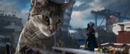 Meowthra seeing lord garmadon