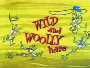 Wild and Woolly Hare Title Card (BQ)