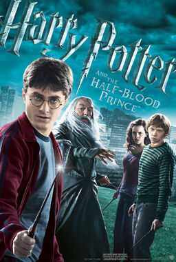 Hp6 poster se