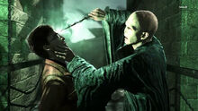 Voldemort (Deathly Hallows Part 2 Game)