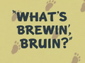 What's Brewin', Bruin Title Card
