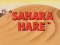 Sahara Hare Title Card