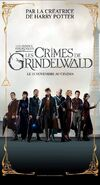 Fantastic beasts the crimes of grindelwald ver22 xlg