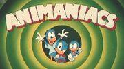 AnimaniacsDucks