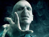 Lord Voldemort/Gallery