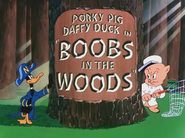 Boobs in the Woods Title Card
