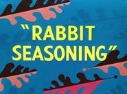 Rabbit Seasoning Title Card