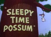 Sleepy Time Possum Title Card