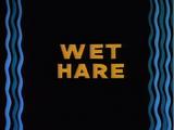 Wet Hare