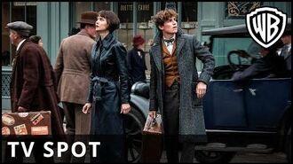 Fantastic Beasts The Crimes of Grindelwald - 'View' TV Spot - Warner Bros. UK