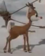 Rudolph says about who