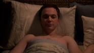 Sheldon's delight