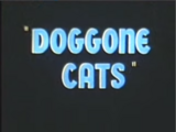 Doggone Cats