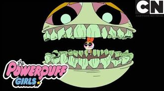 Something's Happening To Blossom Powerpuff Girls Cartoon Network