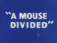 A Mouse Divided Title Card