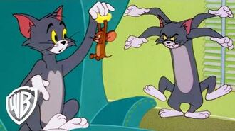 Tom & Jerry Fun At Home WB Kids