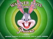 Big House Bunny Intro 1