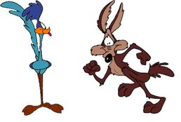 Road runner and wile coyote