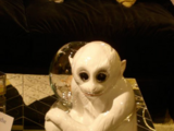 Porcelain Monkey