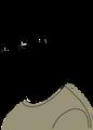 Zevon-Sketch.png