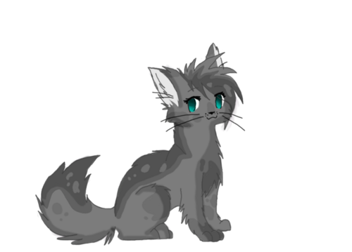Cinderpelt warrior cats by tuffipuffi-d4it5i8