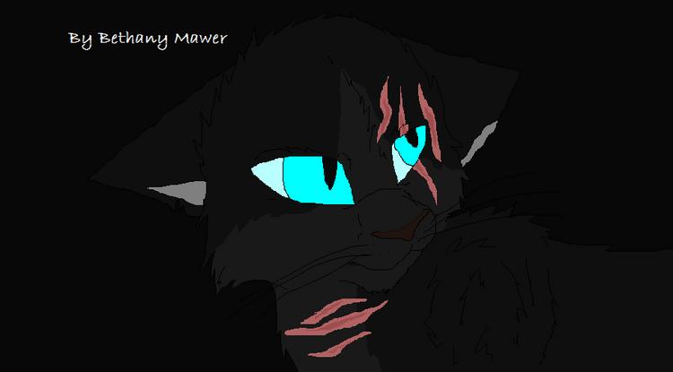 Black-Blackheart-warrior-cats-forever-36829948-898-497