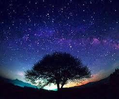 File:Starryskies.jpg