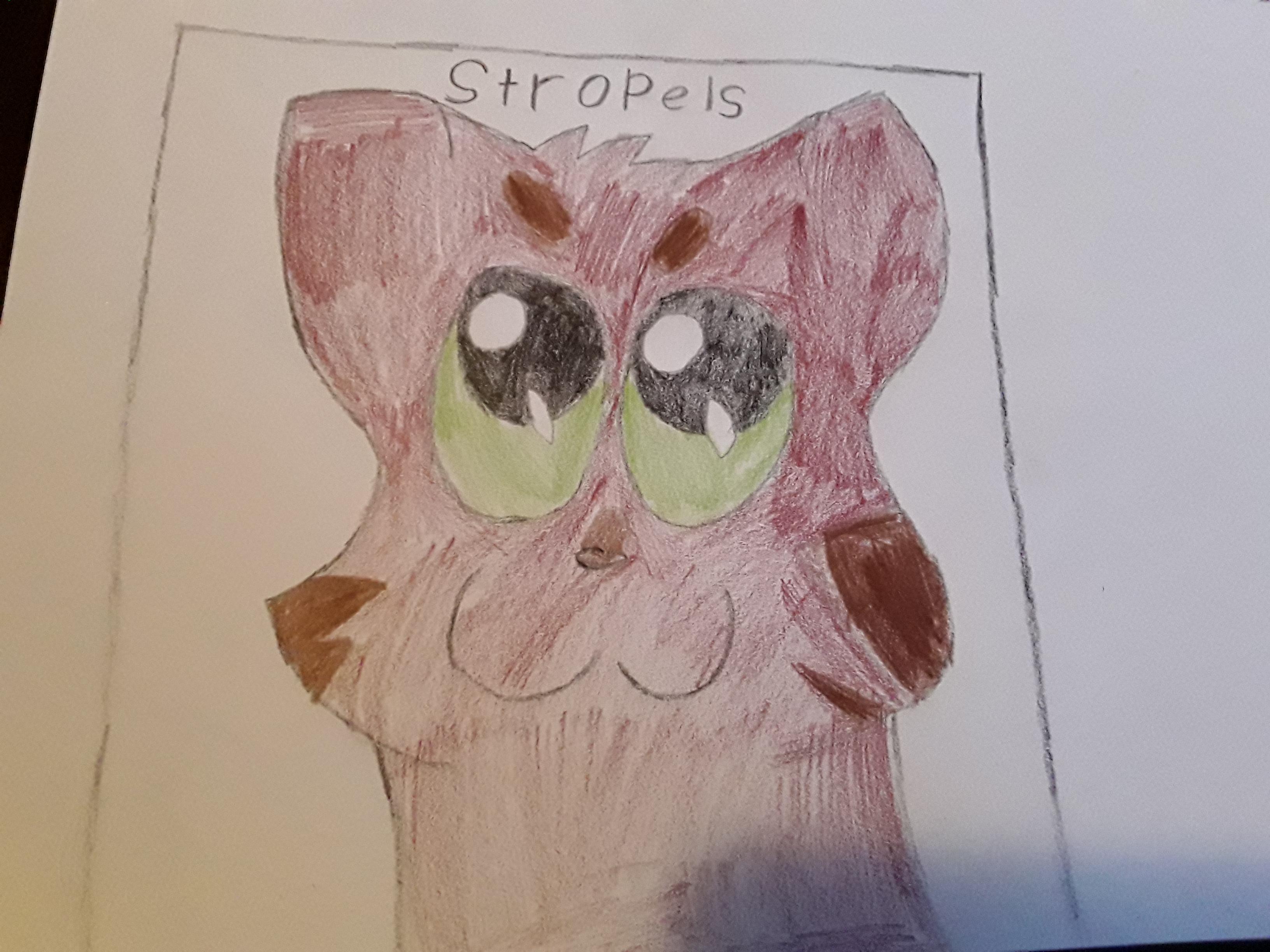 Stropels tekening